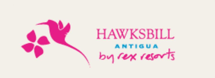 Hawksbill.jpg